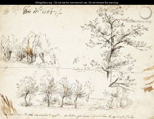 Poplar Trees Along A Road And Other Tree Studies - Gherado Cibo