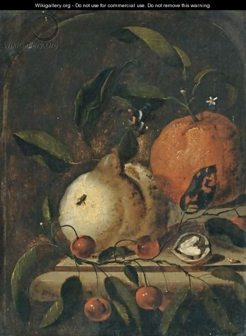 A Still Life With A Lemon, And Orange And A Walnut Together On A Ledge - Marten Nellius