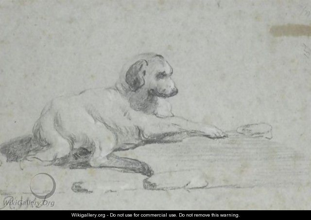 Study Of A Dog - Richard Wilson