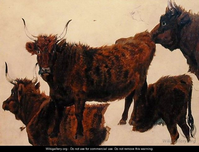 Studies of Highland Cattle - Richard Ansdell