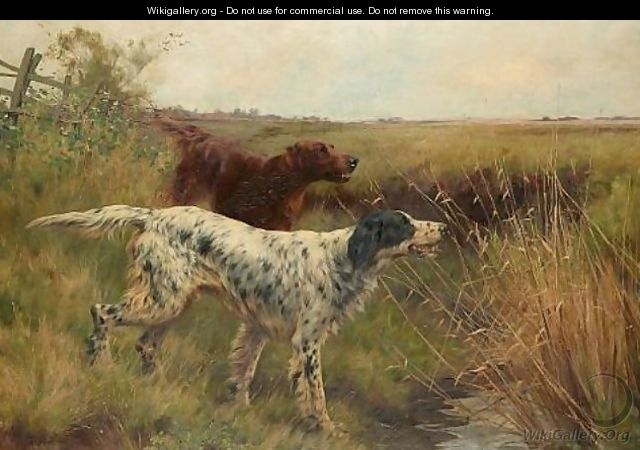 An English setter and an Irish setter in a landscape 1901 - Thomas Blinks