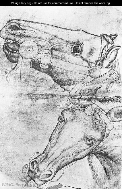 Study of Horse Heads 1433-38 - Antonio Pisano (Pisanello)