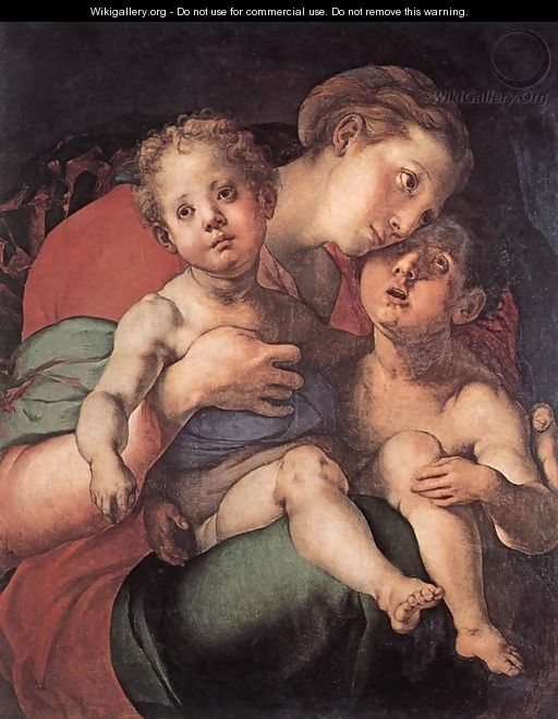 Madonna and Child with the Young St John c. 1528 - (Jacopo Carucci) Pontormo
