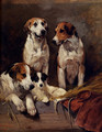 Three Hounds With A Terrier - John Emms