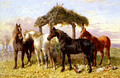 Horses and Ducks by a River - John Frederick Herring Snr