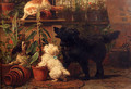 In The Greenhouse - Henriette Ronner-Knip