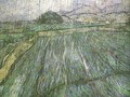 Wheat Field In Rain - Vincent Van Gogh