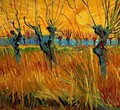 Willows At Sunset - Vincent Van Gogh