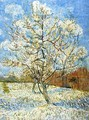 Peach Tree In Blossom - Vincent Van Gogh
