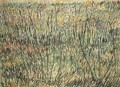 Pasture In Bloom - Vincent Van Gogh