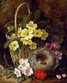 Still Life with Primroses, Violas, cherry Blossom and Geraniums and a Thrush's Nest - George Clare