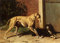 A Greyhound And A Shepherd Dog - Conradyn Cunaeus
