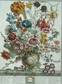 March, from 'Twelve Months of Flowers' - Pieter Casteels