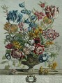 April, from 'Twelve Months of Flowers', by Robert Furber (c.1674-1756) - Pieter Casteels