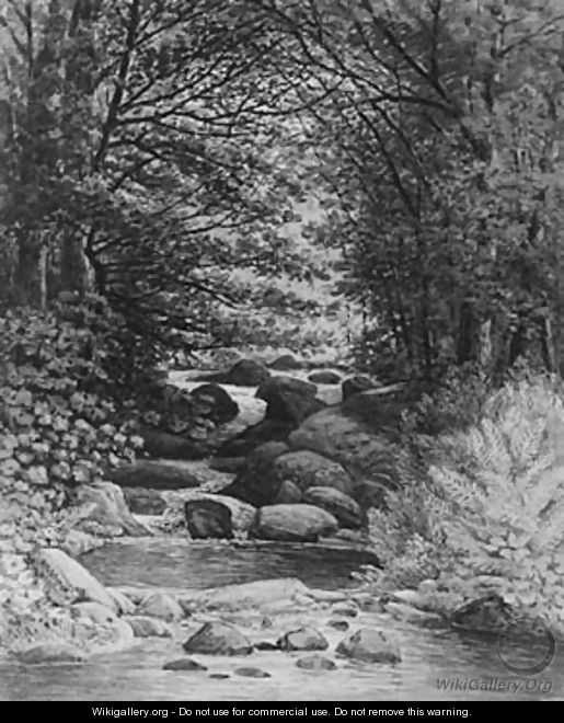 A Forest Cascade at Hiram, Maine - Henry Hitchings