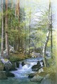 Torrent in Wood behind Mill Dam, Vahrn near Brixen, Tyrol - William Stanley Haseltine