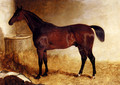 Flexible, A Chestnut Racehorse In A Loose Box - John Frederick Herring, Jnr.