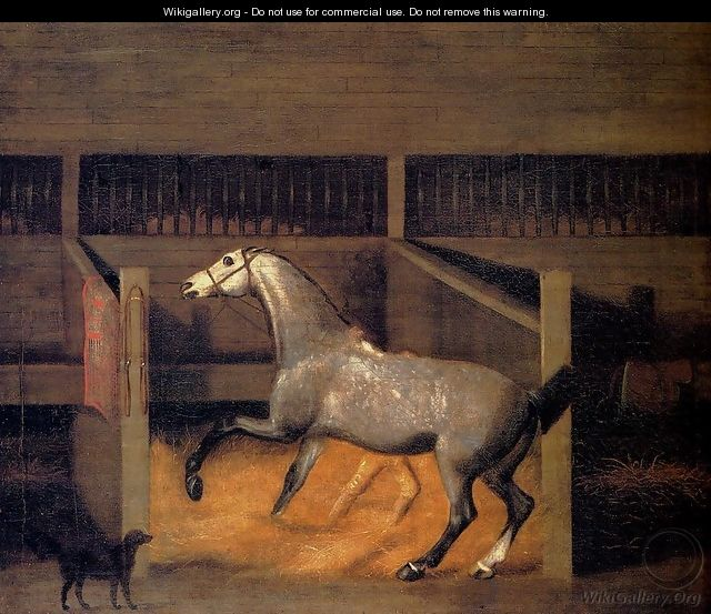 A Dappled Grey In A Stall - Francis Sartorius