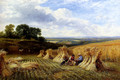 Harvest Field - George Cole, Snr.