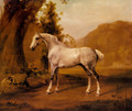 A Grey Stallion In A Landscape - George Stubbs